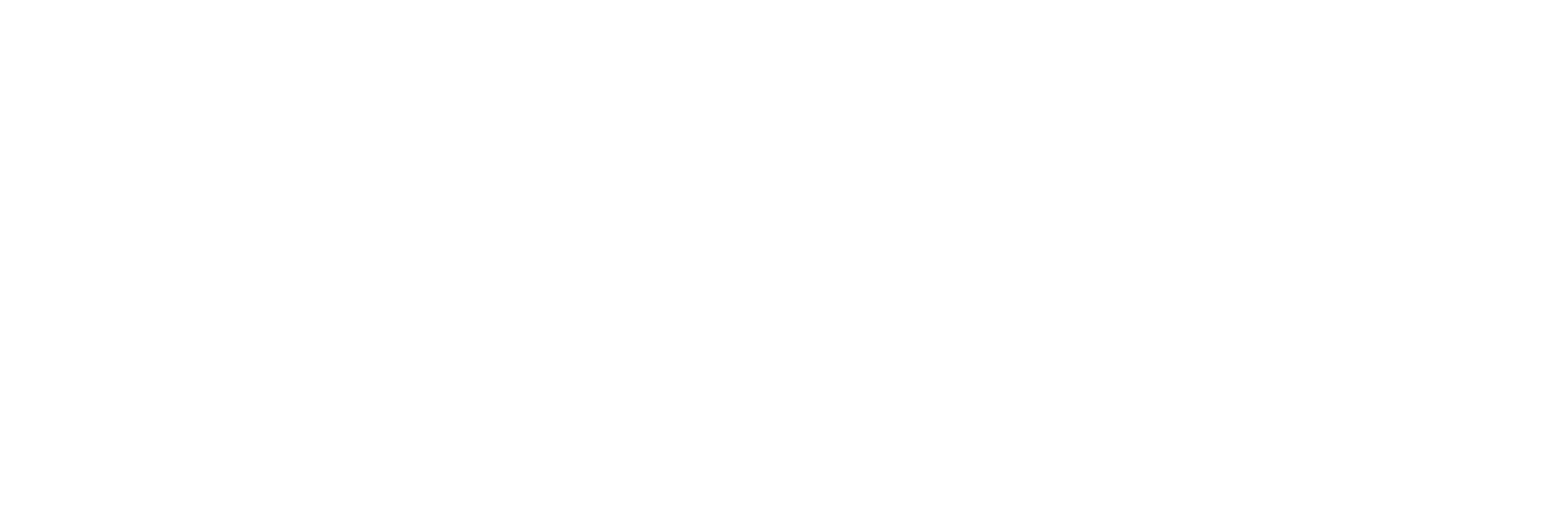 City of Brownwood Logo - Horizontal White
